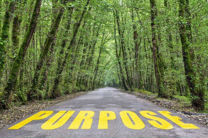 Jungle road to purpose. Purpose word written on jungle road with tall tree two side, green road royalty free stock photography