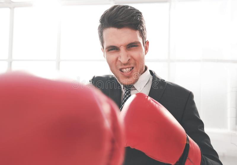 Purposeful young businessman in Boxing gloves. Concept of competitiveness stock photos