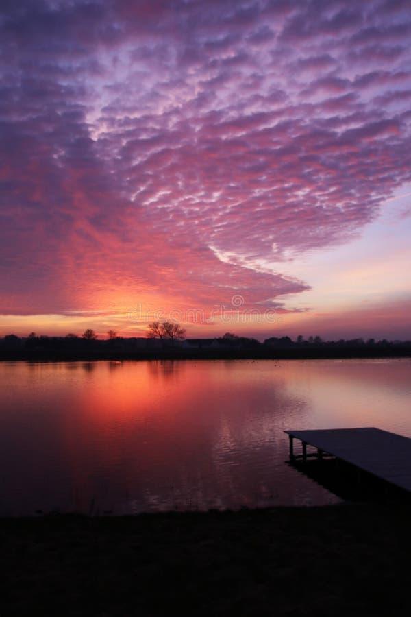 PurpPurple покрасило небо стоковые изображения