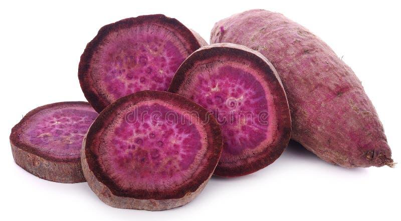 Purpur farbige Süßkartoffeln auf weißem Hintergrund lizenzfreie stockbilder