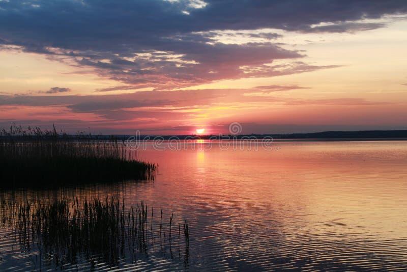 purpur solnedgång fotografering för bildbyråer