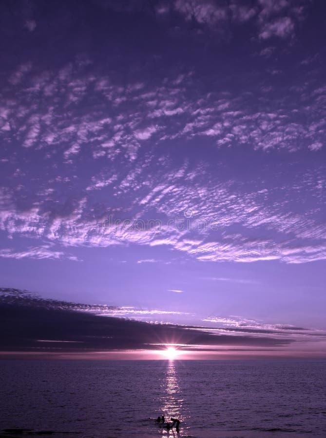 purpur solnedgång royaltyfria foton
