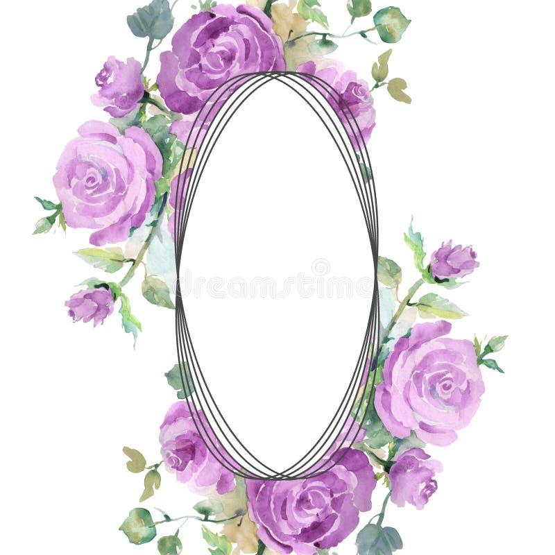 Purpur stieg botanische mit Blumenblumen des Blumenstrau?es Aquarellhintergrund-Illustrationssatz Feldgrenzverzierungsquadrat lizenzfreie abbildung