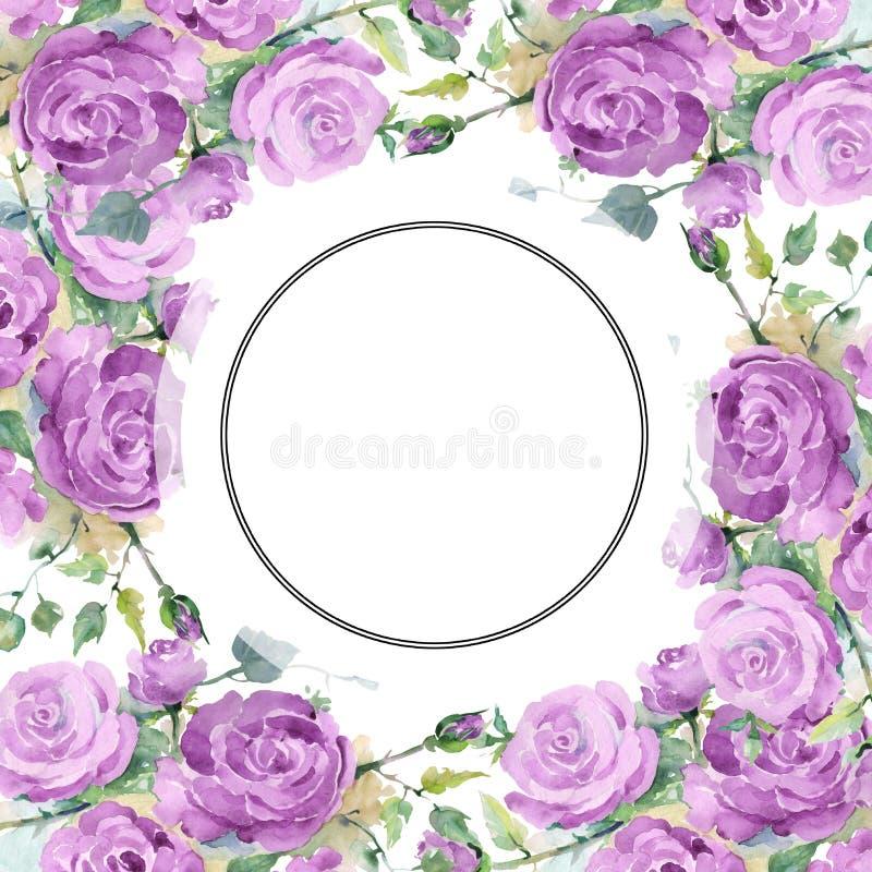 Purpur stieg botanische mit Blumenblumen des Blumenstrau?es Aquarellhintergrund-Illustrationssatz Feldgrenzverzierungsquadrat vektor abbildung