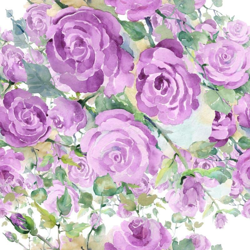 Purpur stieg botanische mit Blumenblumen des Blumenstrau?es Aquarellhintergrund-Illustrationssatz Nahtloses Hintergrundmuster lizenzfreie abbildung