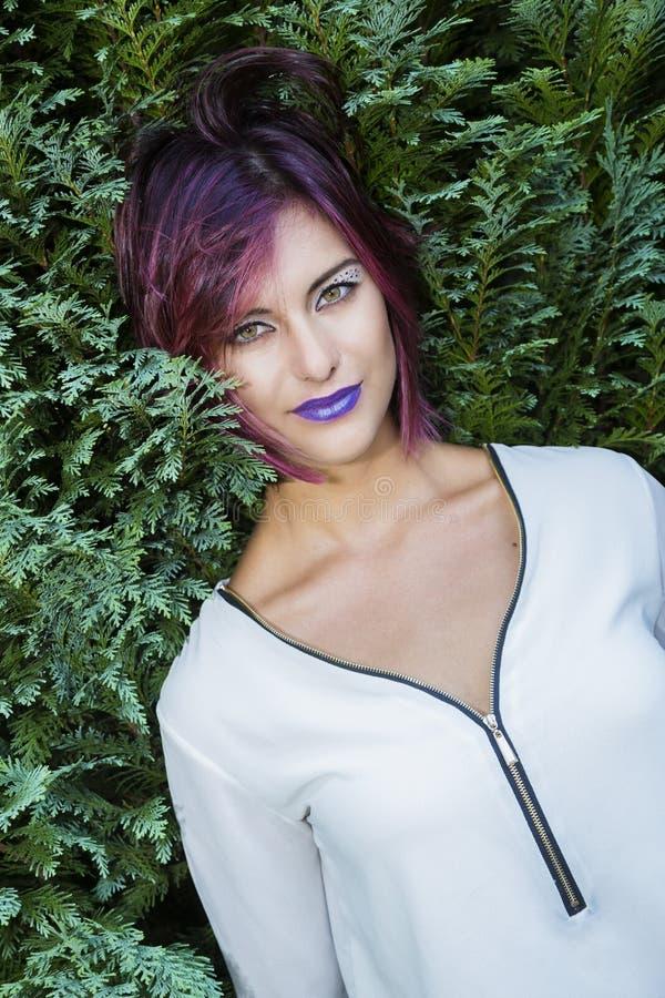 purpura kanter fotografering för bildbyråer