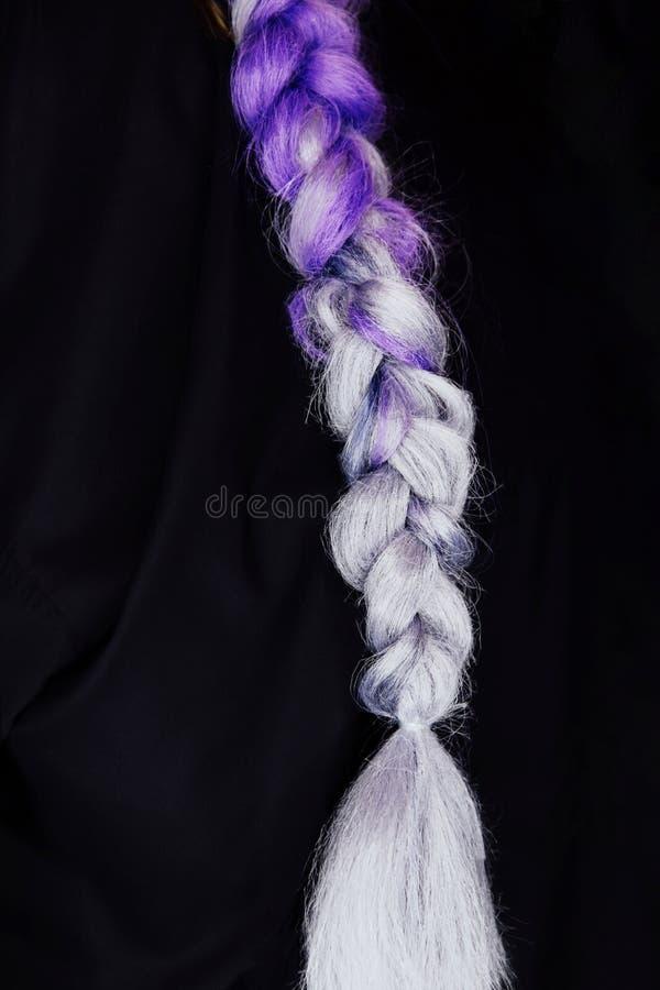 Purpura koloru warkocza próbki Szamerowanie z syntetycznymi purpura koloru kanekalon pigtails obraz stock