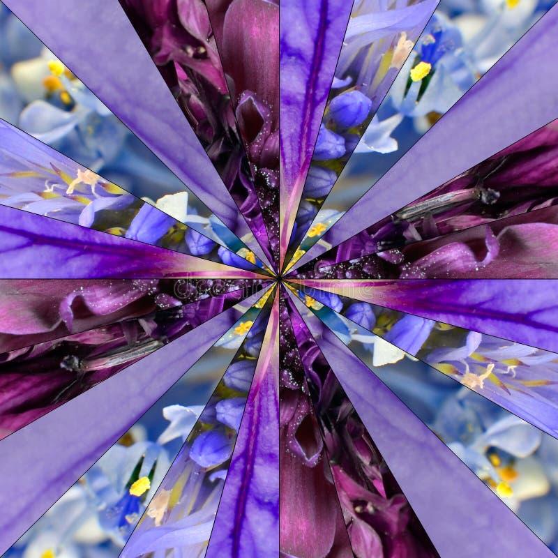Purpura kwiatu centrum kolażu Geometryczny wzór zdjęcie stock