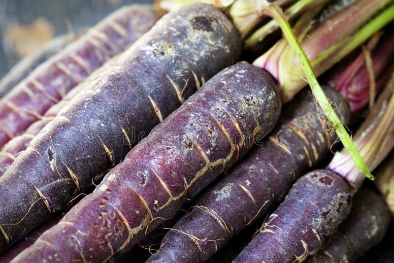 purpura morötter royaltyfria bilder