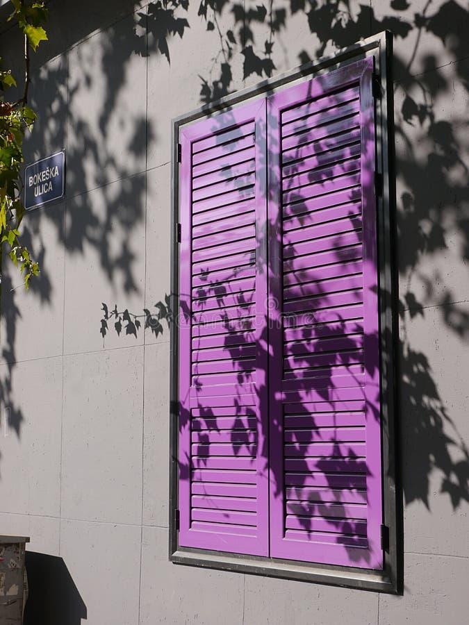 Purpura zamyka nad okno w Podgorica z cieniami liście na ścianie obrazy royalty free