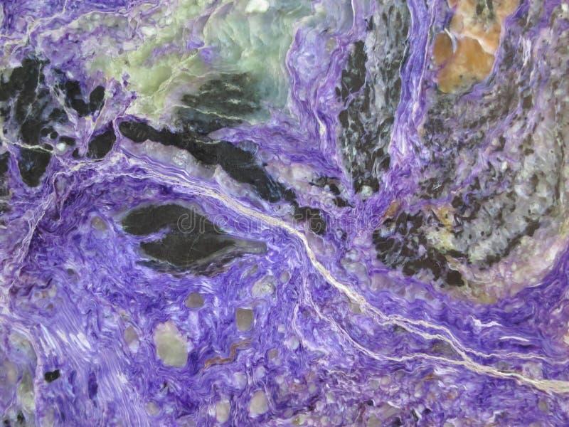 Purpurfärgad bakgrund - Charoite materielfoto fotografering för bildbyråer