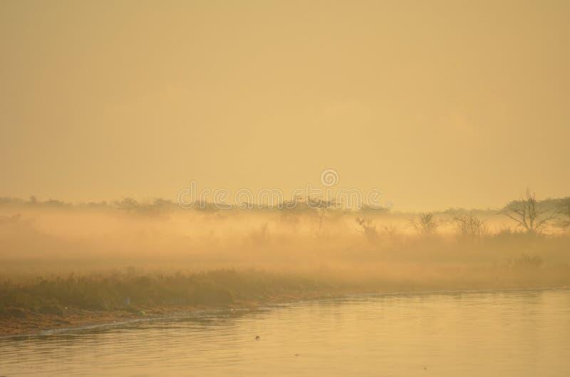 Purpurfärgad dimmig soluppgång över vatten slapp fokus Bakgrund arkivfoton