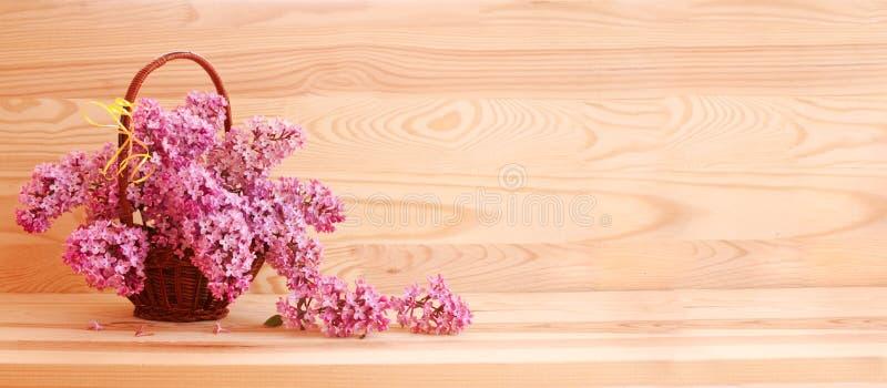 Purpurfärgad lila bukett royaltyfria bilder