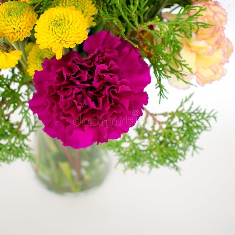 Purpurfärgad nejlika som är ordnad med andra blommor arkivbild