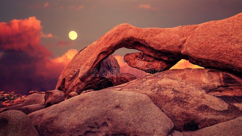 Purpurfärgad solnedgång och resningmåne i Joshua Tree National Park, USA royaltyfri bild