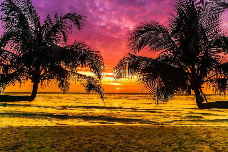 Purpurfärgad solnedgång på den tropiska stranden på den Koh Kood ön i Thailand royaltyfria bilder