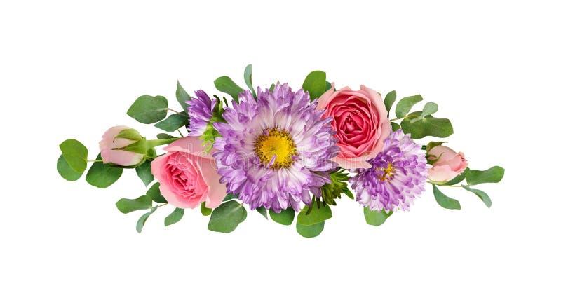 Purpurfärgade aster och rosa färgrosen blommar med eukalyptussidor i a stock illustrationer