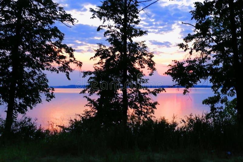 Purpurfärgade blommor för härlig solnedgång över en stor sjö royaltyfri fotografi