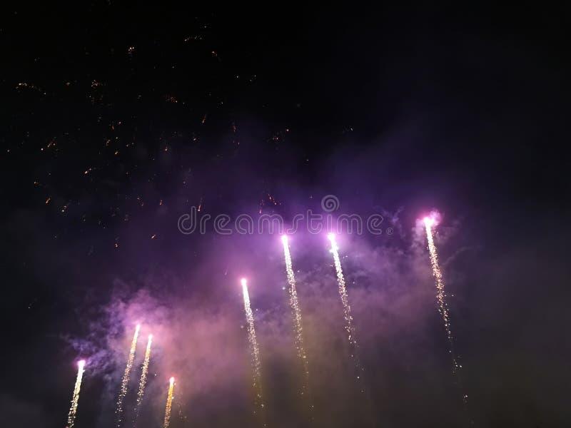 Purpurfärgade fyrverkerier skuggar i natthimlen royaltyfri bild