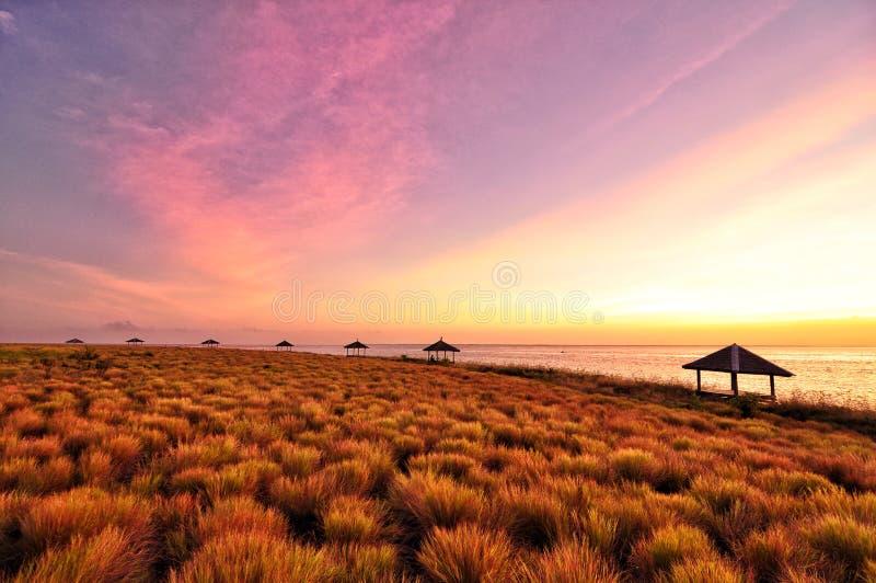 Purpurfärgade himlar för solnedgång på den breda månen för strandhavhonung arkivbild