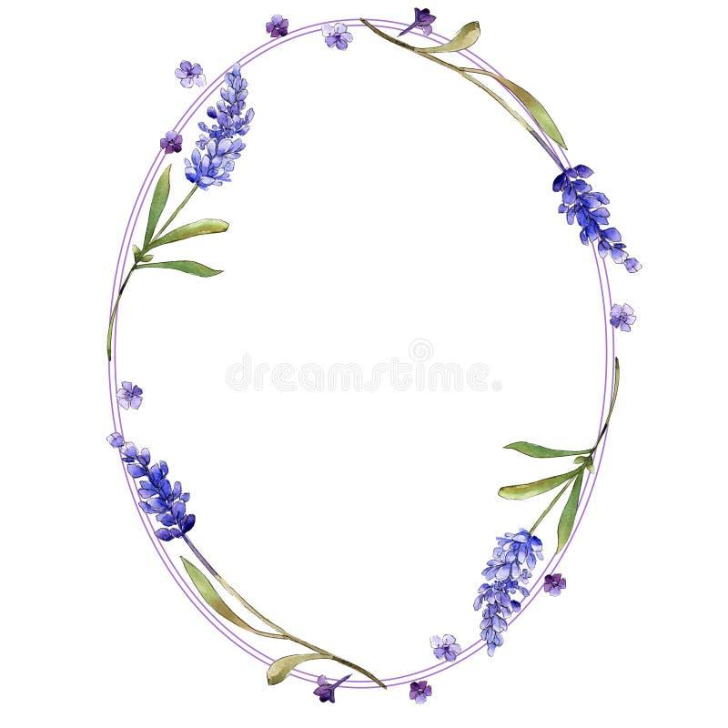 Purpurfärgade lavendelblommor för vattenfärg Blom- botanisk blomma Fyrkant för ramgränsprydnad stock illustrationer