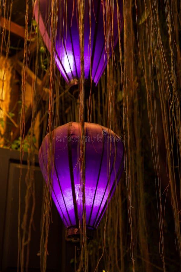 Purpurfärgade lyktor på natten som omges vid, rotar eller lianer i den forntida staden av Hoi An, Vietnam royaltyfria foton