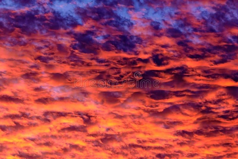 Purpurfärgade Mammatus fördunklar vid solnedgång royaltyfri fotografi