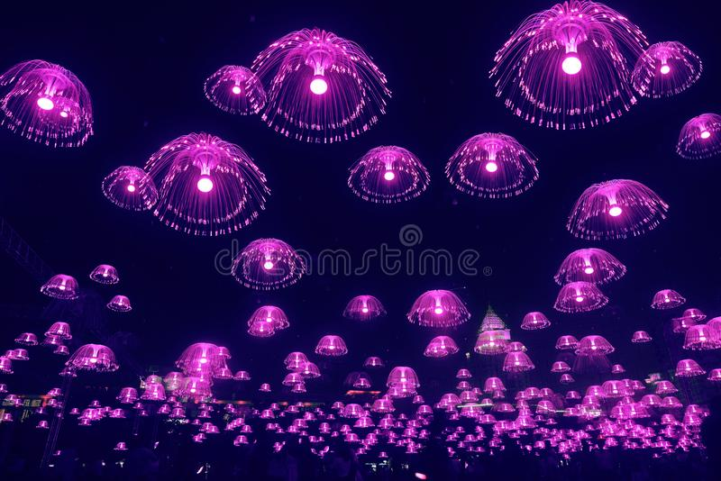Purpurfärgade manetljus skiner i natthimlen royaltyfria bilder