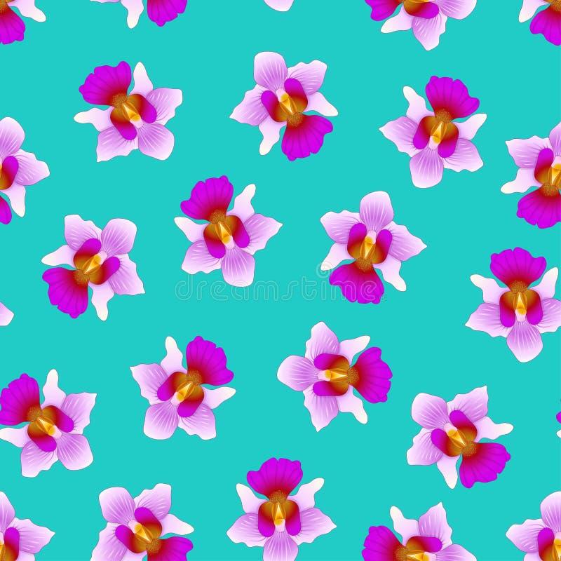 Purpurfärgade Vanda Miss Joaquim Orchid på gröna Teal Background Singapore nationell blomma också vektor för coreldrawillustratio stock illustrationer