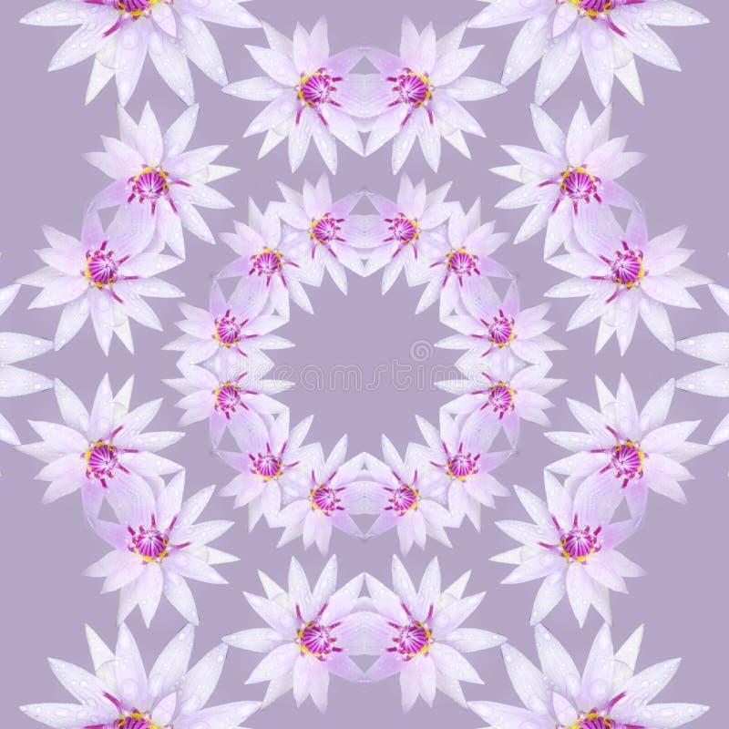 Purpurf?rgade blommor i mandala royaltyfri illustrationer