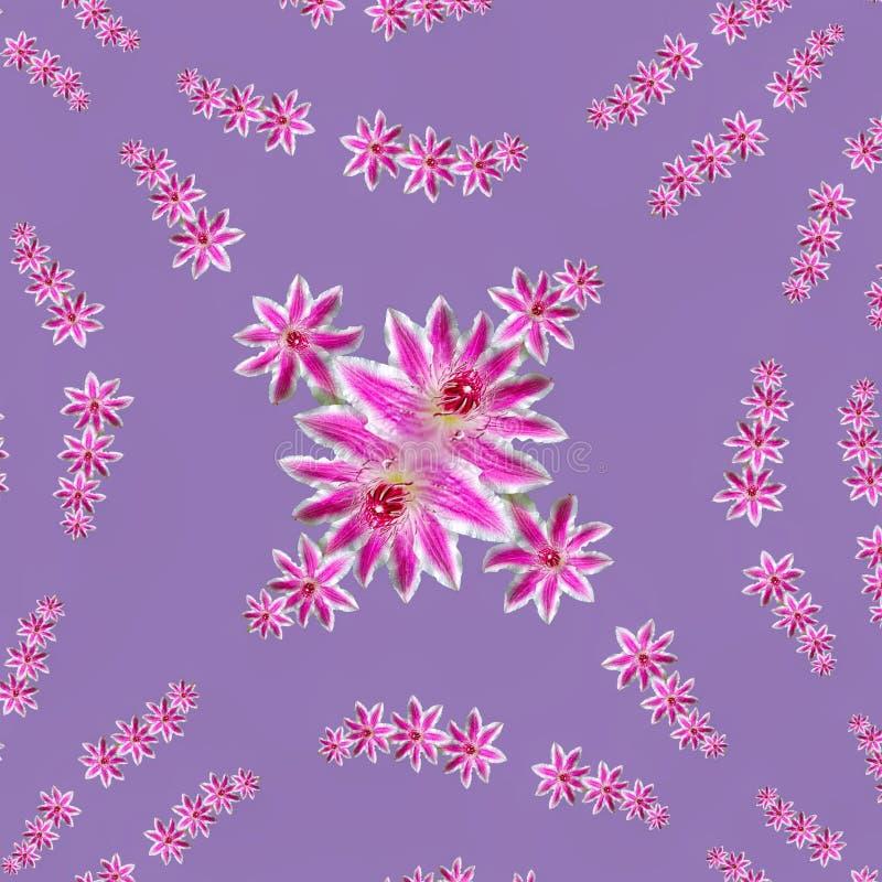 Purpurf?rgade blommor i mandala stock illustrationer