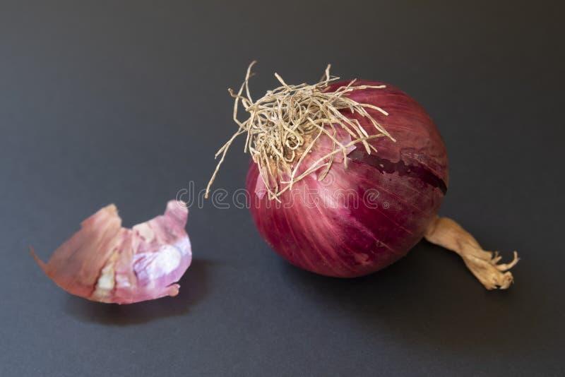 Purpurowa cebula fotografia stock