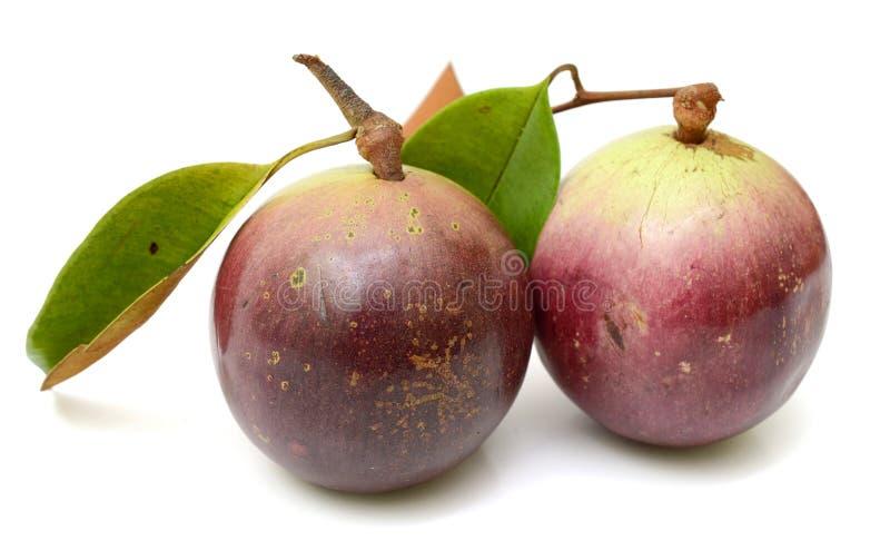 Purpurowa gwiazdowego jabłka owoc z liściem zdjęcia royalty free
