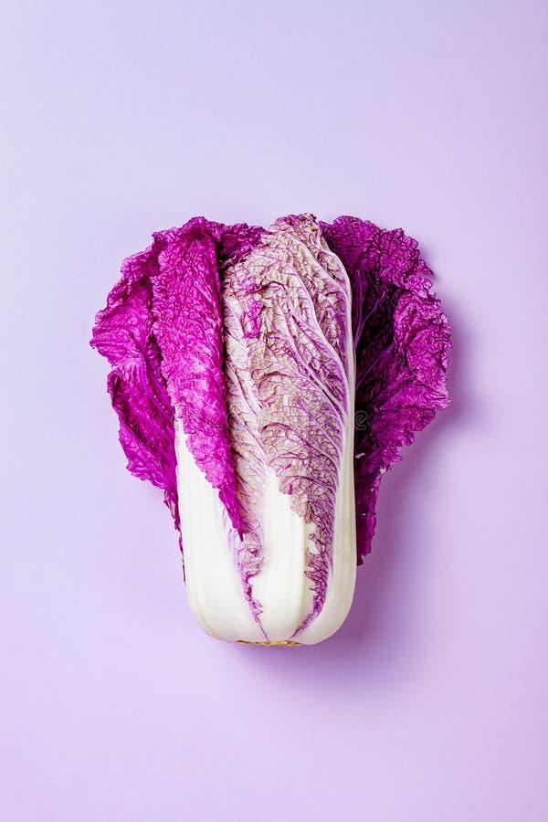 Purpurowa napy kapusta na pastelowego koloru tle Minimalny pojęcie Roślina jarosza lub weganinu zasadzony kucharstwo Czyści łasow obraz stock