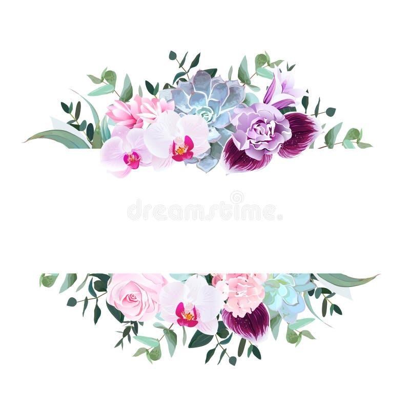 Purpurowa orchidea, menchii róża, hortensja, kampanula, goździk, succul ilustracja wektor