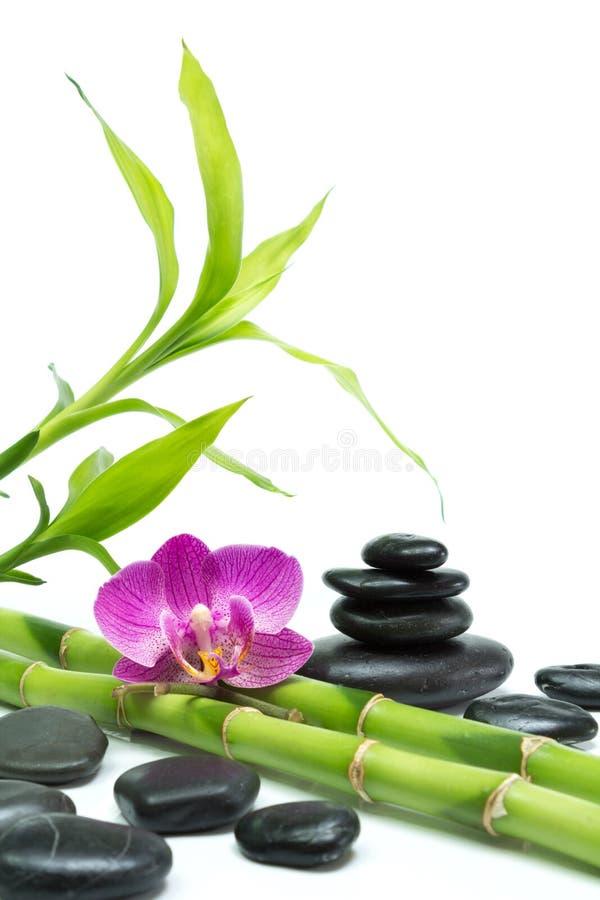 Purpurowa orchidea z bambusa i czerni kamieniami - biały tło fotografia royalty free