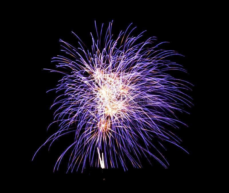 Purpurowi fajerwerki w niebie zdjęcia stock