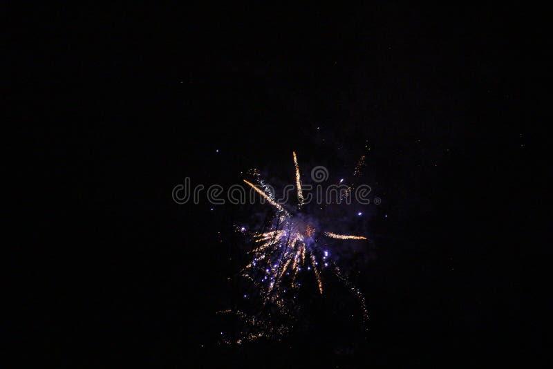 Purpurowi i błękitni fajerwerki w niebie obrazy stock