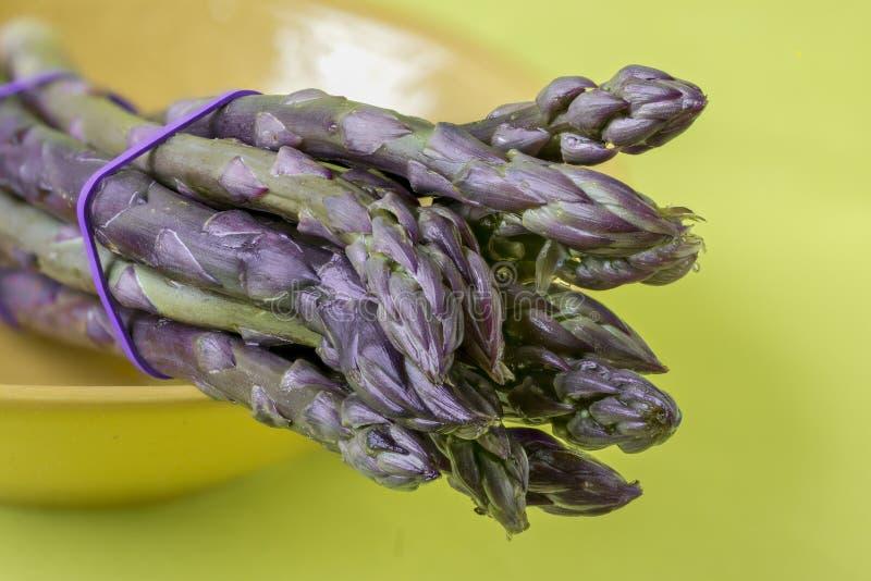 Purpurowy Asparagus obraz stock