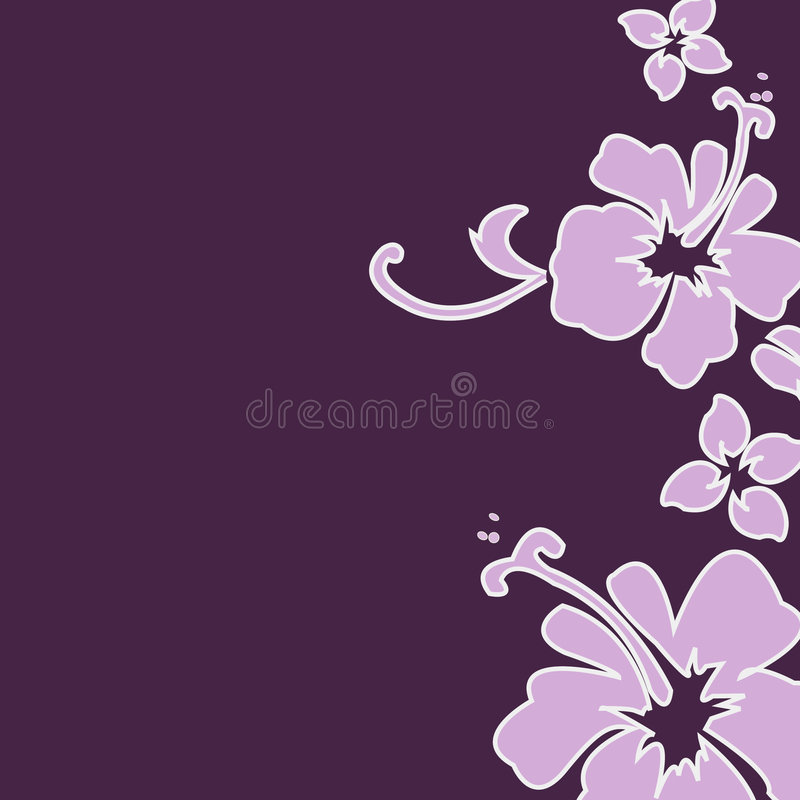 purpurowy hibiskus