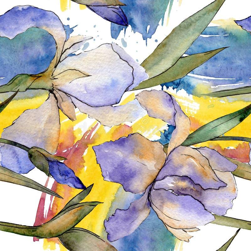 Purpurowy irysowy kwiecisty botaniczny kwiat Akwareli tła ilustracji set Bezszwowy tło wzór royalty ilustracja