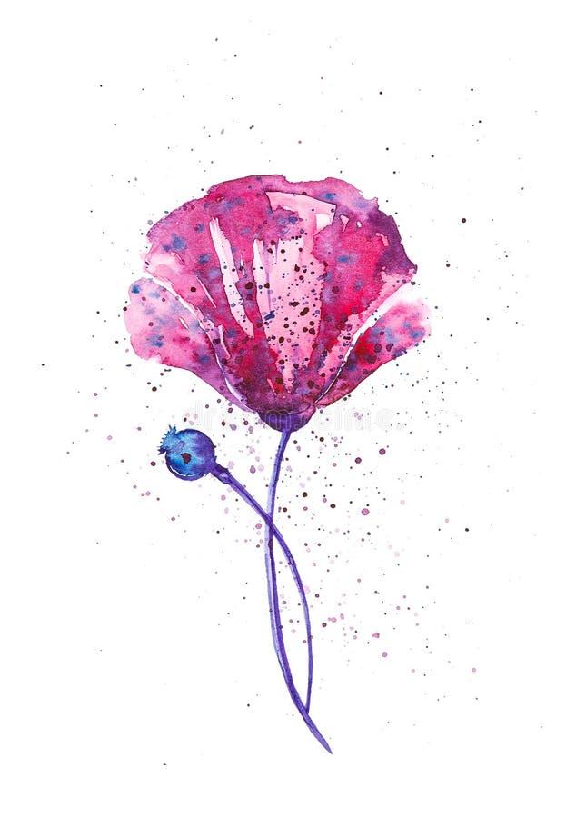 Purpurowy maczek otaczający barwionymi kroplami Abstrakcjonistyczna akwareli ilustracja odizolowywająca na bielu royalty ilustracja