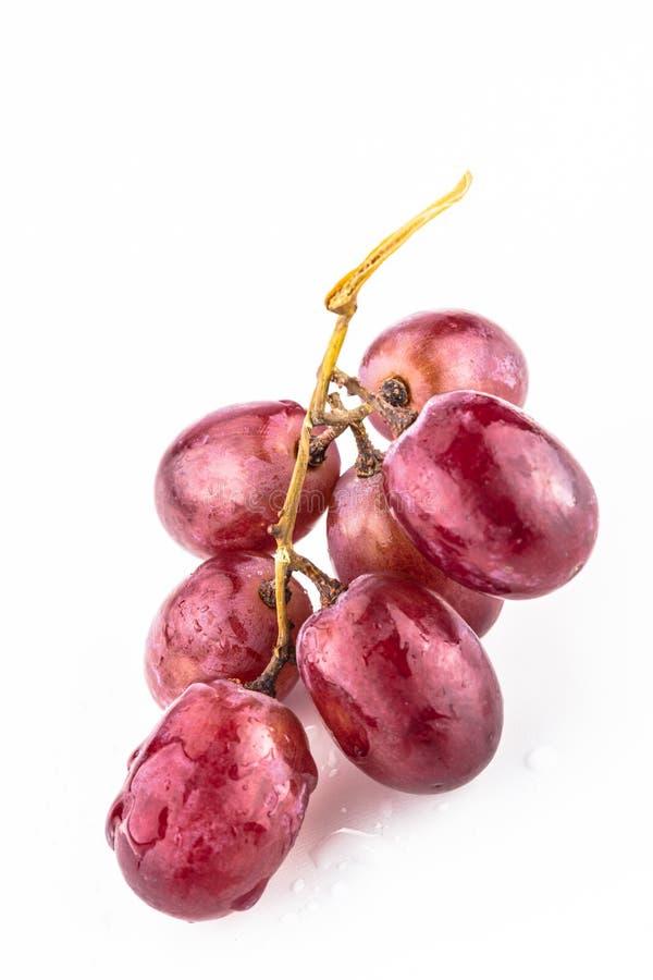 Purpurowy winogrono na białym tle fotografia royalty free