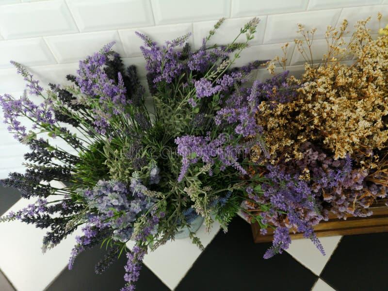 Purpurrote Blume trocken im hölzernen Kasten stockbilder
