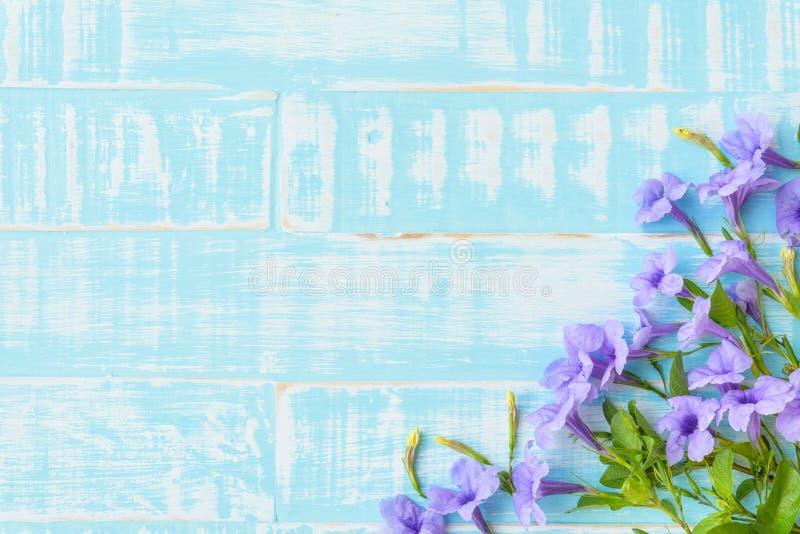 Purpurrote Blumen auf einem hellen blauen hölzernen Pastellhintergrund stockfotografie