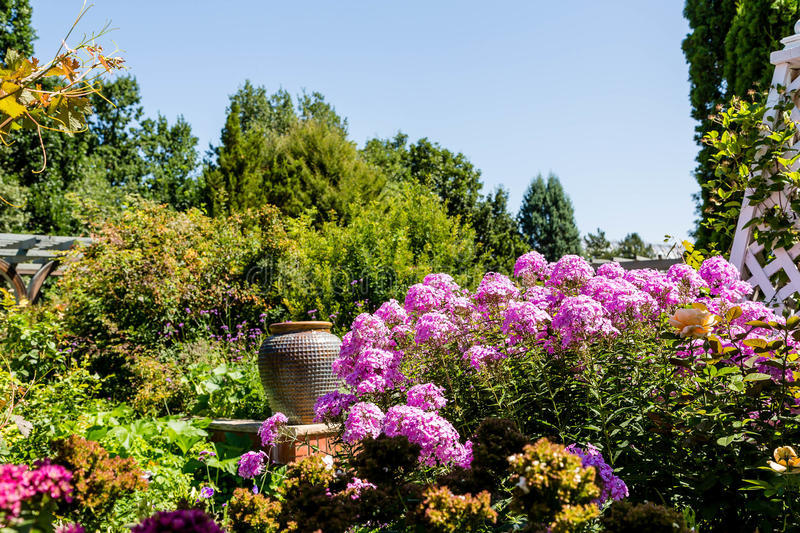 Purpurrote Blumen und keramischer Topf-öffentlich Garten lizenzfreie stockfotografie