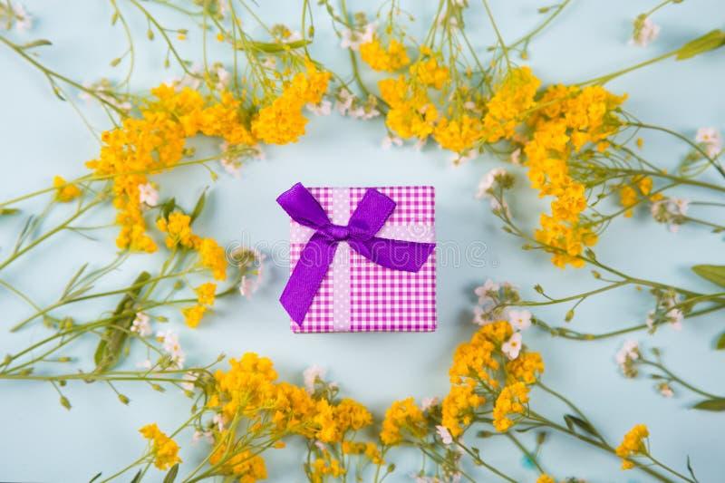 Purpurrote Geschenkbox umgeben mit den gelben und weißen kleinen Blumen auf hellem tadellosem Hintergrund lizenzfreies stockfoto