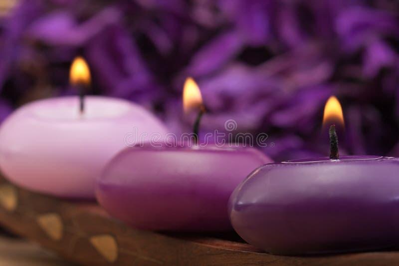 Purpurrote getonte Kerzen lizenzfreie stockbilder