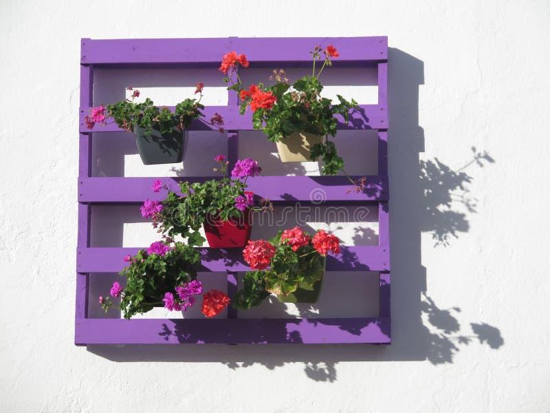 Purpurrote Palette mit Blumen stockfotos