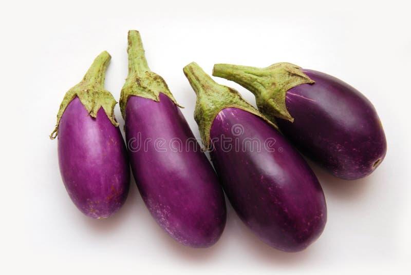 Purpurrote Schätzchen-Auberginen stockfoto